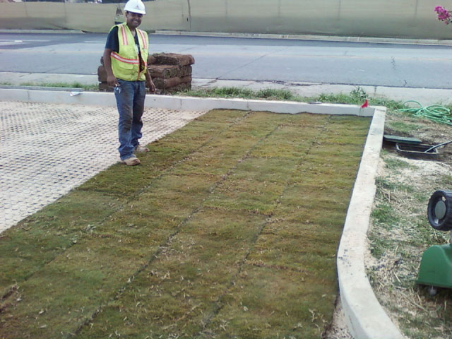 "Robins AFB ""Green"" Parking Lot Project"