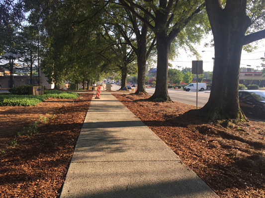 Roswell Road Streetscape